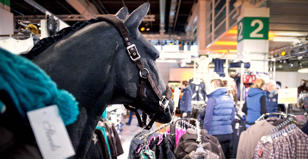 hund herz single mit silvester mann sucht sehen frau 2013 online hamburg mit  Premium Exhibitions. Premium Exhibitions.